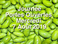 portes-ouvertes-2019-red